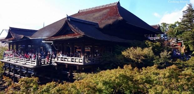 Premier contact avec Kyoto