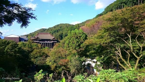 Vue sur le Kiyomizu Dera