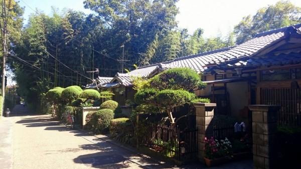 Dans Arashiyama