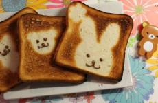 Lapin sur toast