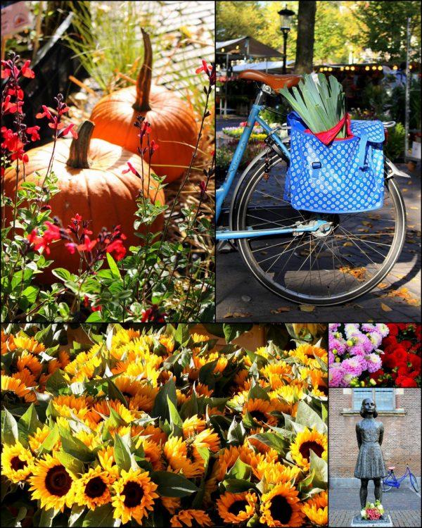 flower-market-utrecht-centrum